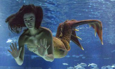 """Ruy vê Ritinha de sereia no aquário nesta segunda (7) em """"A Força do Querer"""""""