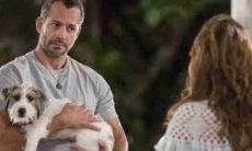 Com briga de Apolo e Tancinha, Tito foge e é atropelado nesta quarta (3) em 'Haja Coração'
