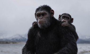 Globo exibe 'Planeta Dos Macacos: A Guerra' na 'Tela Quente' desta segunda (9)